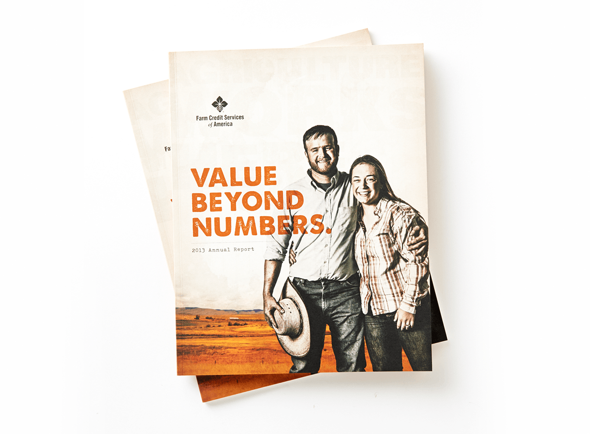 Value Beyond Numbers Annual Report Example