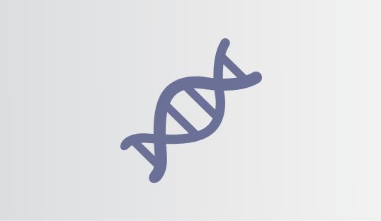 Branding DNA Icon