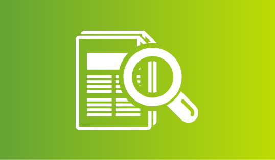 Magnifying Documents Icon